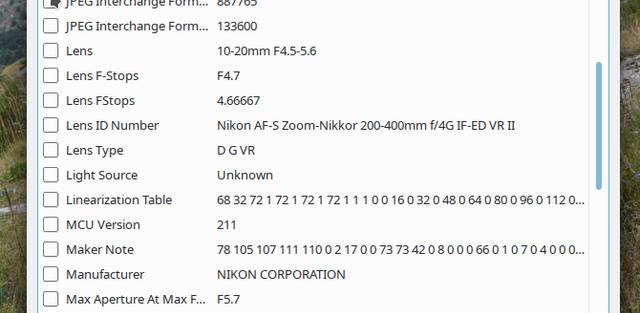 [Image: nikon-af-p-10-20.png]
