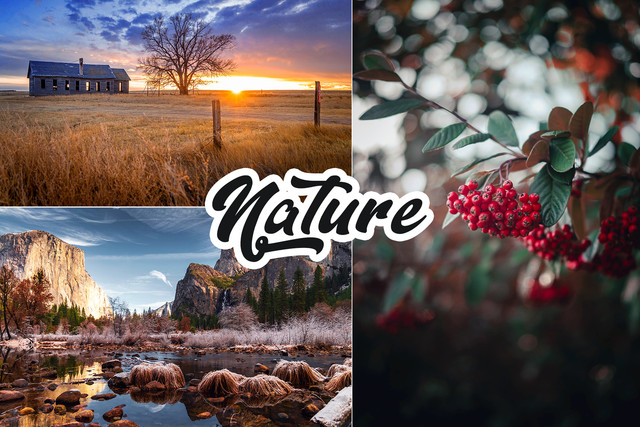 4 IN 1 Photoshop Actions Bundle - 2