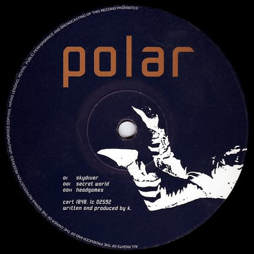 Polar - Skydiver