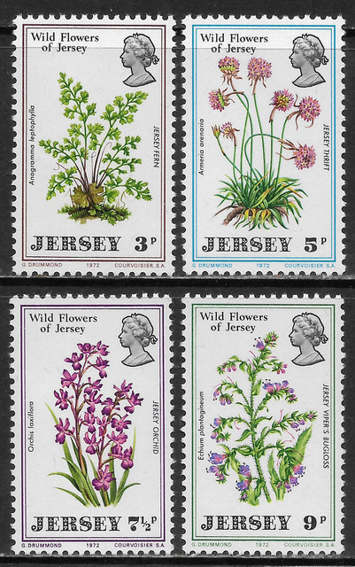 O Jersey 61