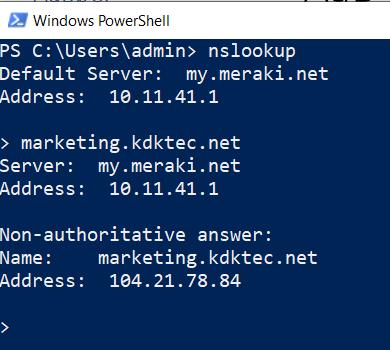 NSLookup command in Windows PowerShell