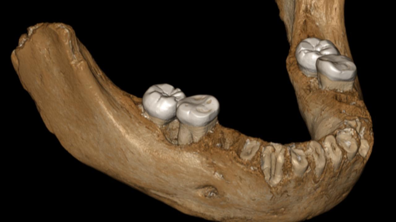 Los denisovanos ya vivían en el Tíbet hace 160.000 años