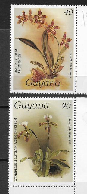 O Guyana 1684