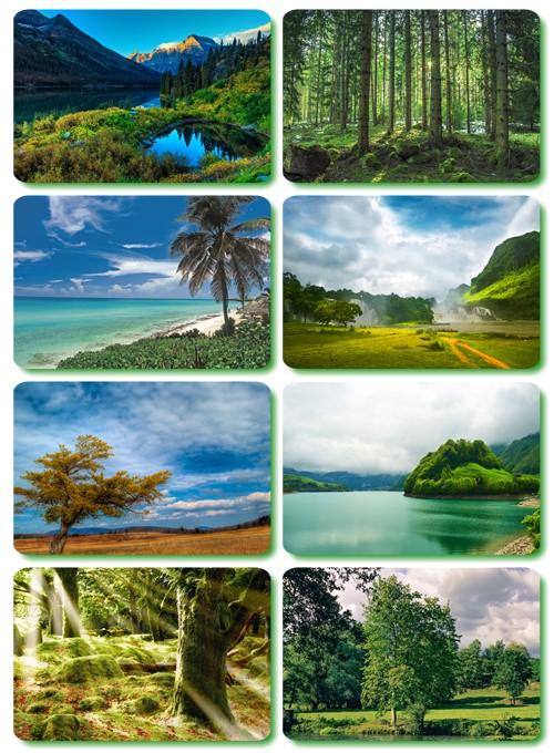 Piękna przyroda HD2560x1600 part 17