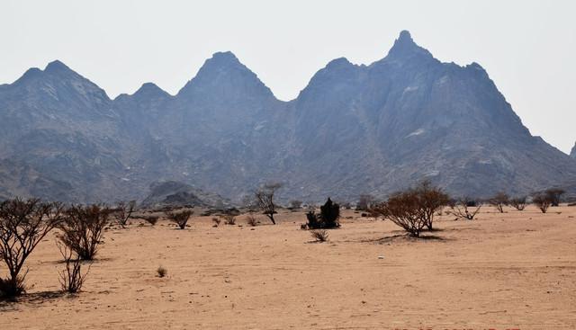 2020 42º Rallye Raid Dakar - Arabia Saudí [5-17 Enero] - Página 2 1i