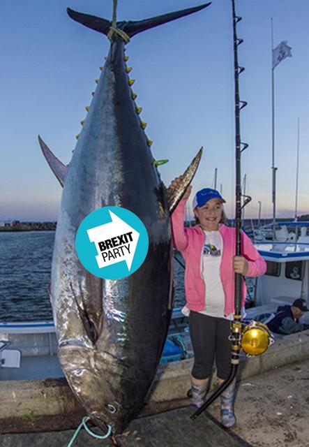 Ebrexit-catch2