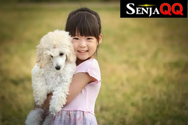 5 Jenis Hewan Peliharaan Anjing yang Ramah  Pada Anak