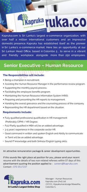1158c-Senioro-Executiveo-Humano-Resource