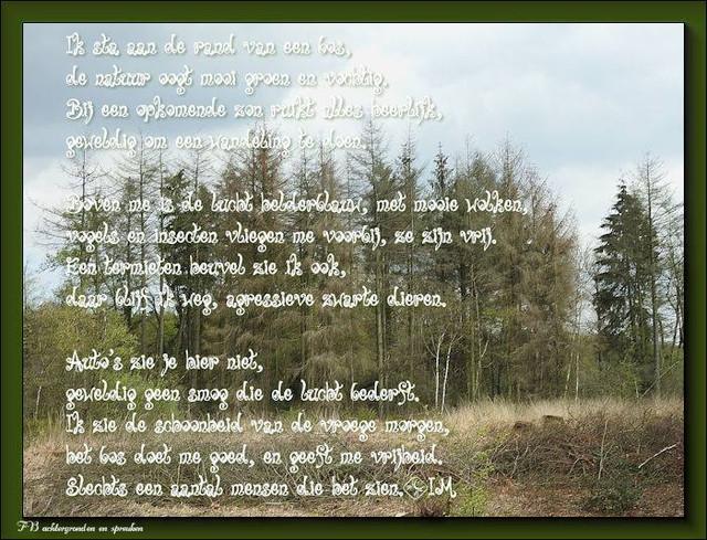 1-het-bos
