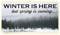 winter-is-here-calendaria.png