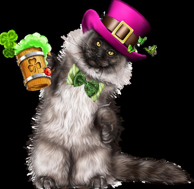 Leprechaun-Cat-With-Beer-51.png