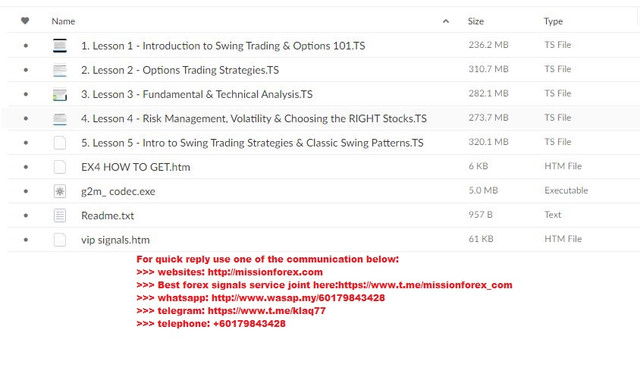 Warrior Trading - Options Swing Trading Course (Total size: 1.39 GB Contains: 5 files).jpg