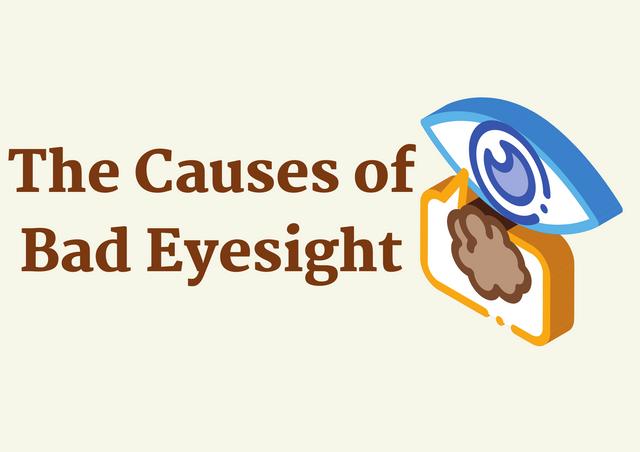 The-Causes-of-Bad-Eyesight