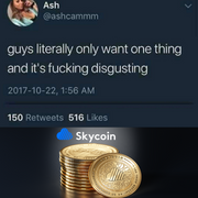 [Image: skycoin-meme.png]