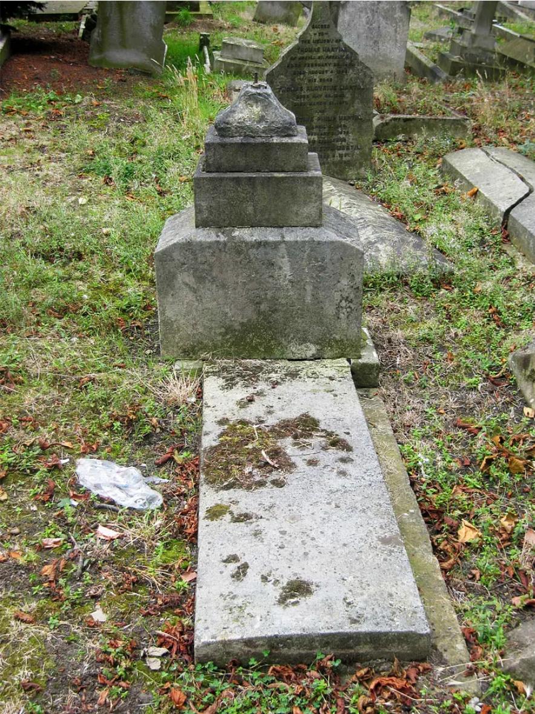 [Resim: Grave-of-Robert-Alexander-Rooney-1806-1888.png]
