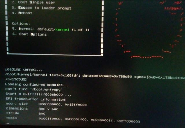 freebsd-boot-error