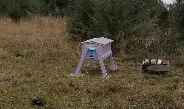 2019-01-11-Kathy-s-Birthday-Hive-4