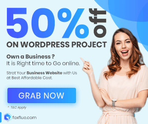 Wordpress Webdevelopment Offer