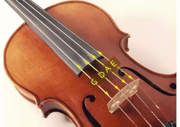 Cuerdas del violin