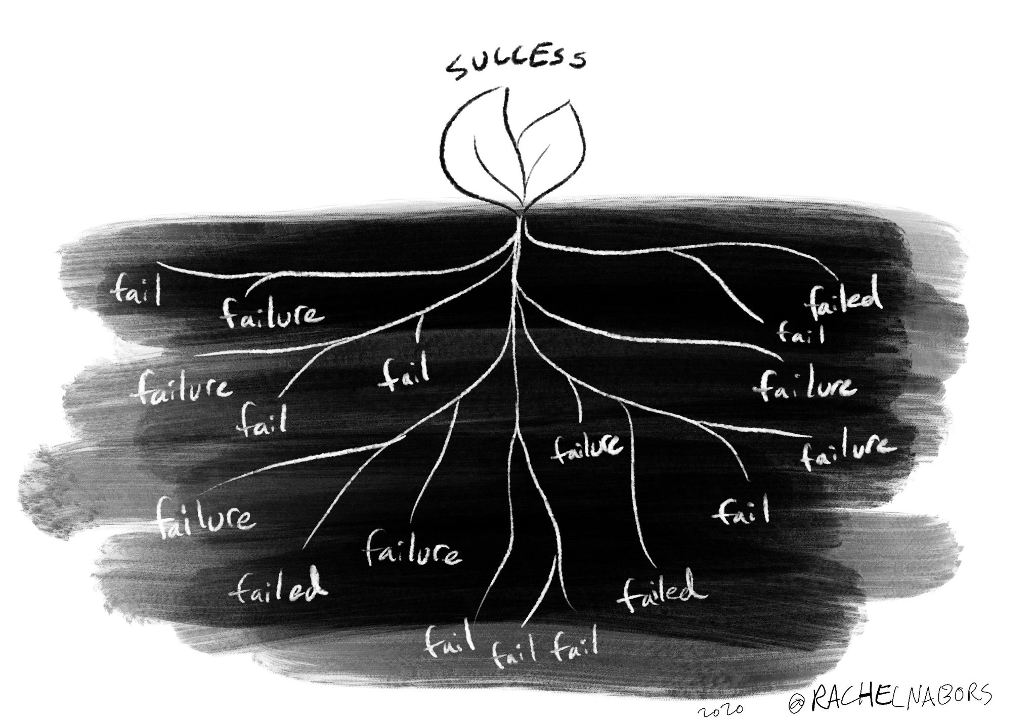 Drawing of a plant with its roots, illustrating that a flower of success has tons of roots of failure
