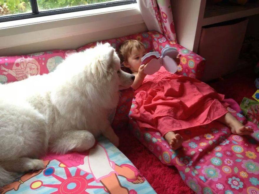 Когда собаки большие, а дети маленькие - 44 потрясающие фотографии - 34