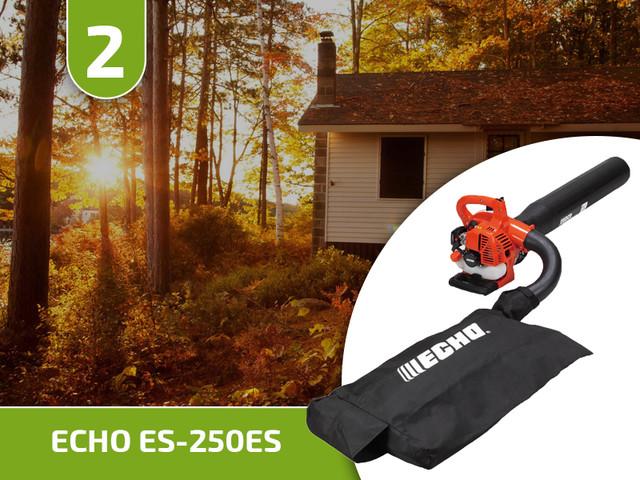 ECHO ES-250ES