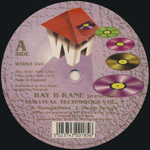 Bay B Kane - Survival Techniques EP 1995