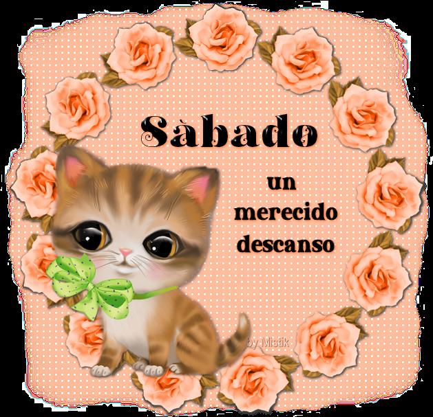 gatitoSa.png