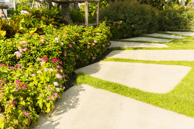 Sand-washed-finishing-concrete-paving-stepping-stone-on-a-smooth-green-grass-lawn-in-a-shrub-plantin