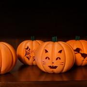 UM3-Pumpkin.jpg