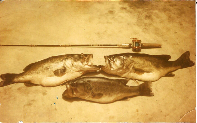 Lake-Kissimmee-catch-3
