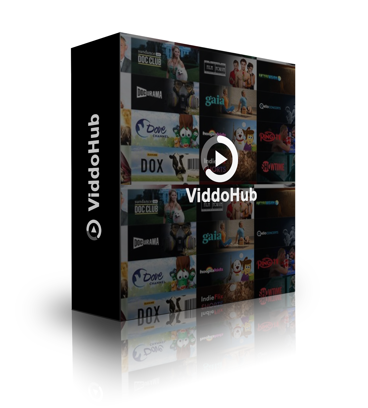 ViddoHub (Video Subscription Membership Platform)