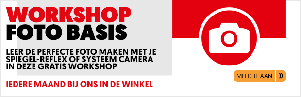 Banner-Website-WS-Foto