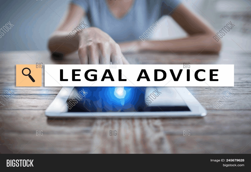 Legal Advice Public Political