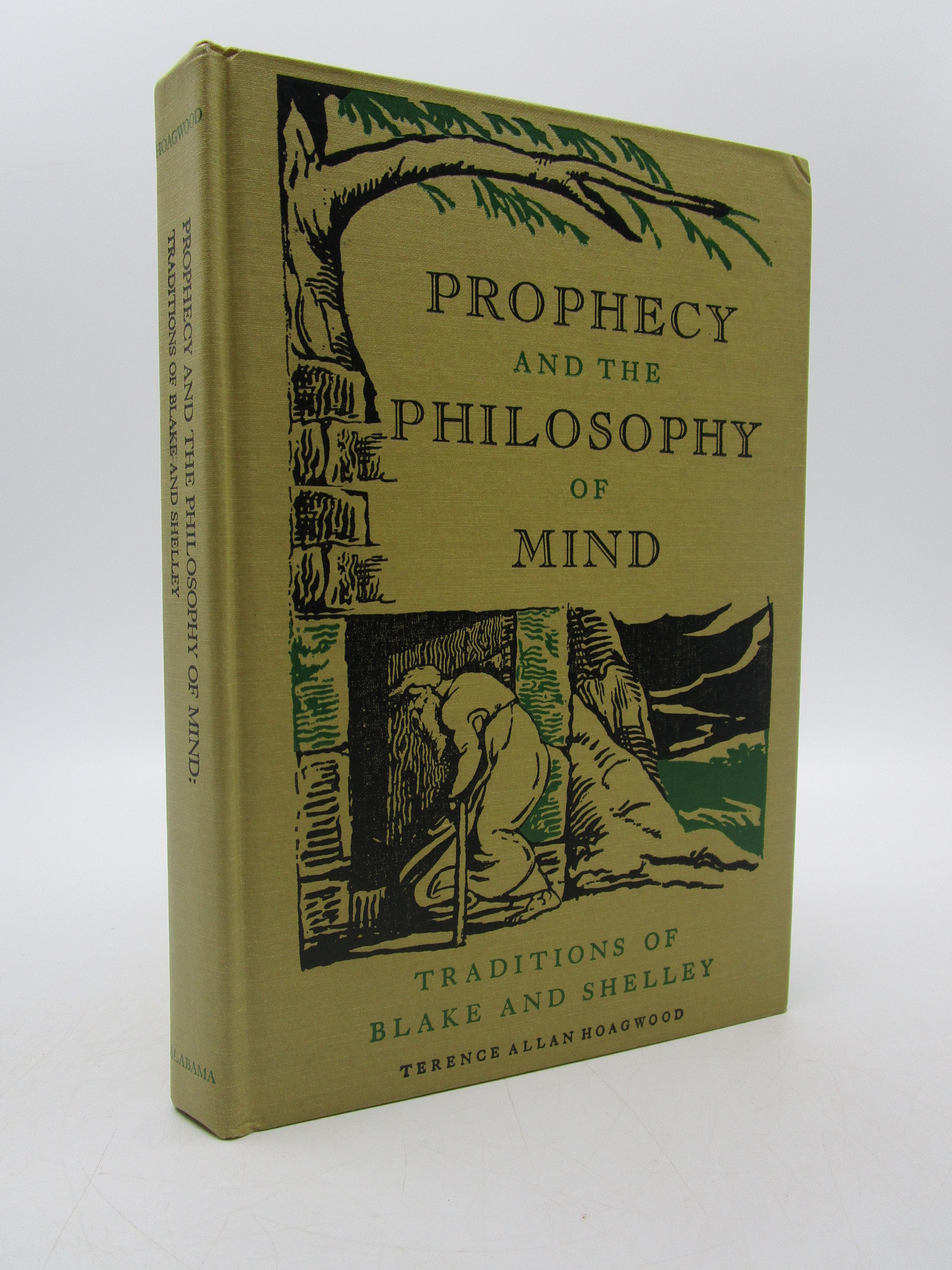 Image for Prophecy and the Philosophy of Mind: Traditions of Blake and Shelley