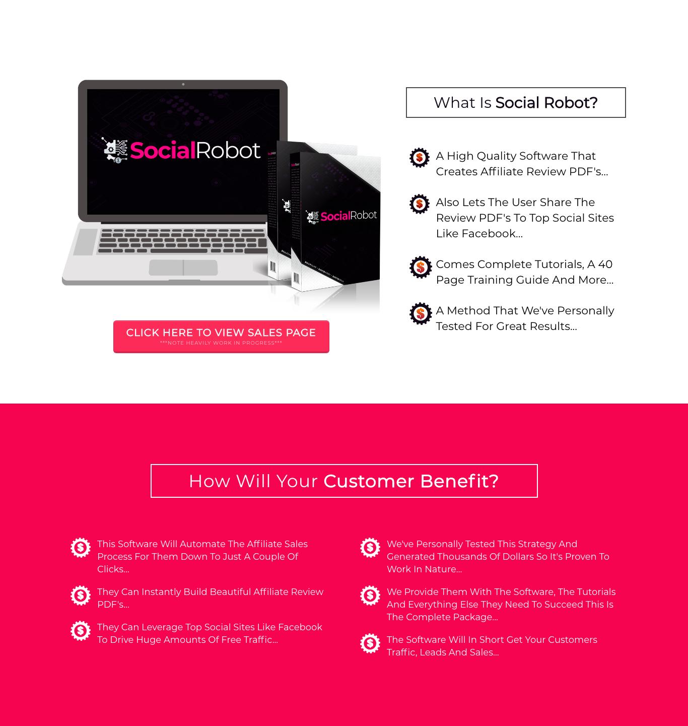 Social Robot Review