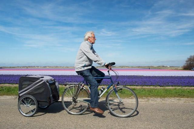 A man and a dog go for a walk with a bike and a dog cart
