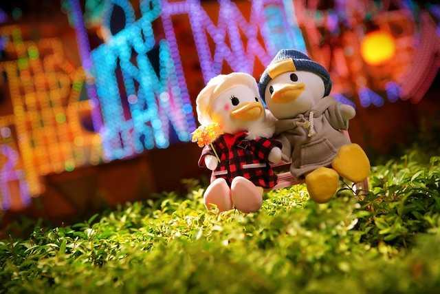 [Hong Kong Disneyland Resort] Le Resort en général - le coin des petites infos - Page 16 Zzzzzzzzzzz14