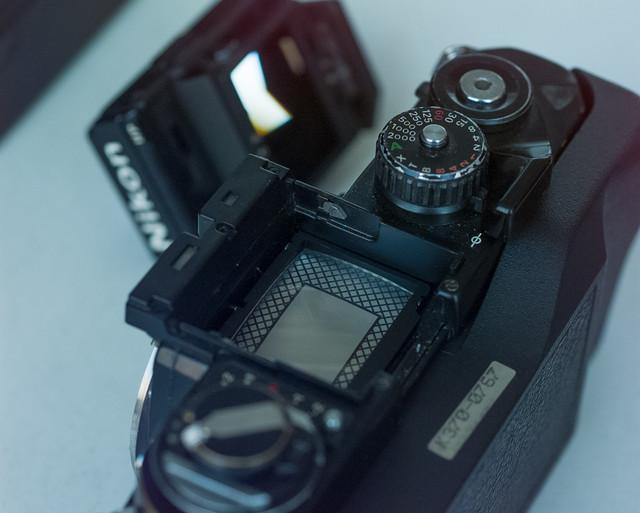 55 ISO 200 Aperture F Shutter 125 Lens mm Exposure M Program HF Exp Comp 1 0 Meter area Mtrx Flash s