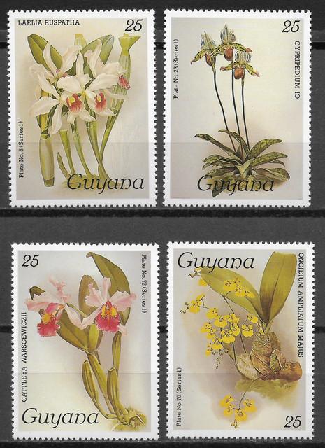 O Guyana 1437