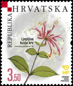 2008. year HRVATSKA-FLORA-ENDEMI-LJEPLJIVA-KOZJA-KRV