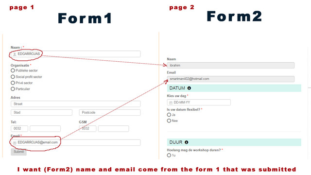 info-display-Smart-Forms