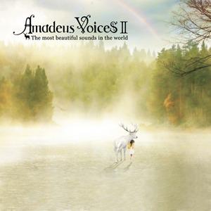 Compilations incluant des chansons de Libera Amadeus-Voices-II-300