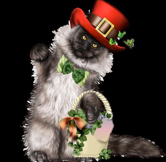 Leprechaun-Cat-With-Beer-42.png