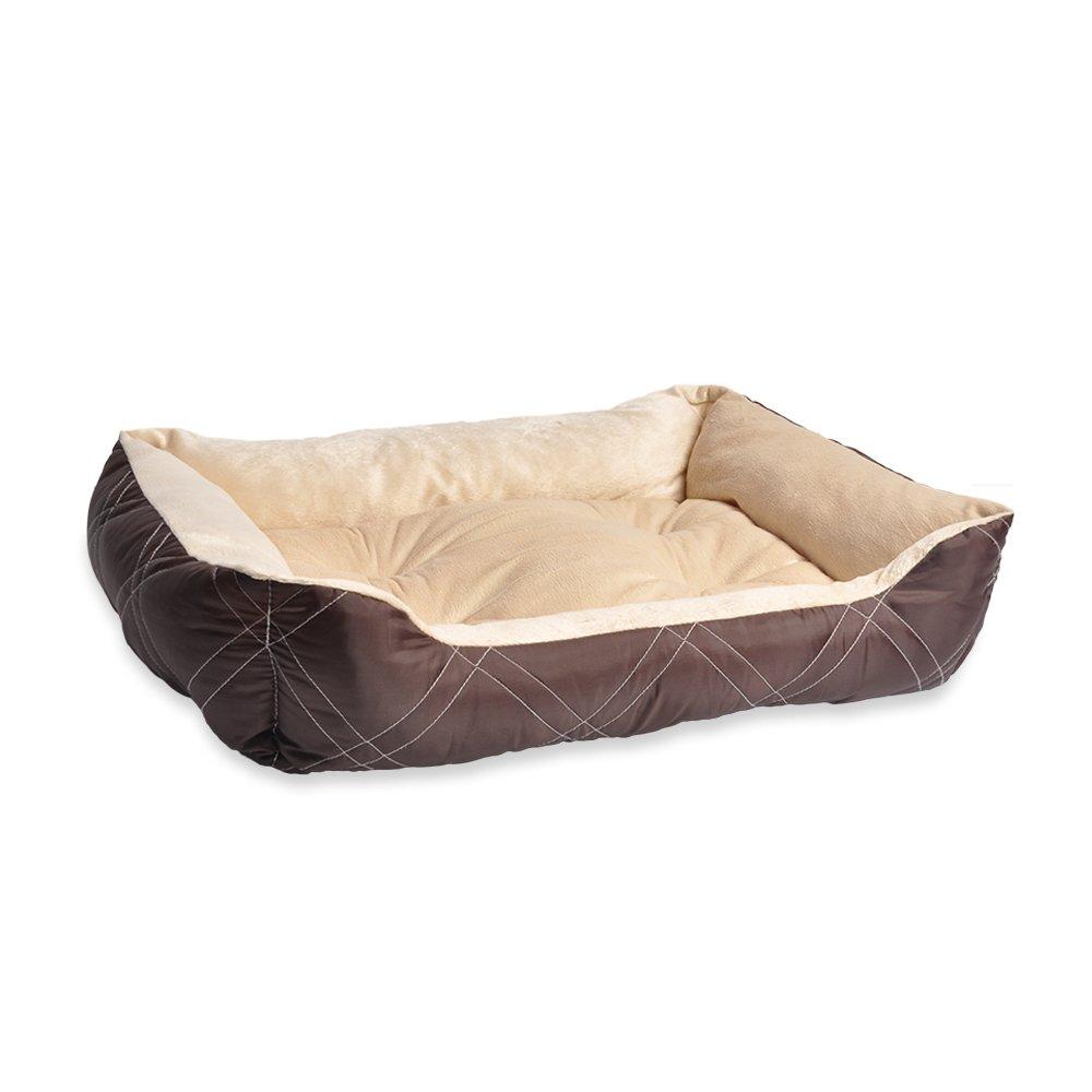 dog daycare jakarta - evcode pet supplies & salon