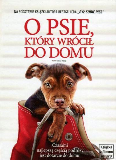 O psie, który wrócił do domu / A Dog's Way Home (2019) PLDUB.AC3.DVDRip.XviD-GR4PE | Dubbing PL