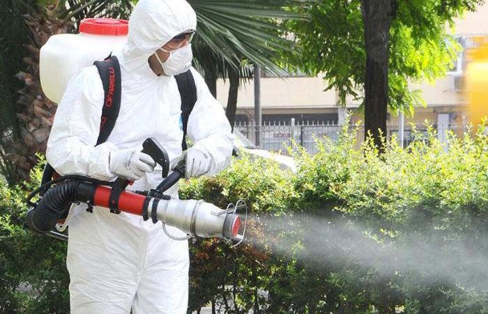 В Европе борьба с комарами ведется постоянно / Фото: mapme.club