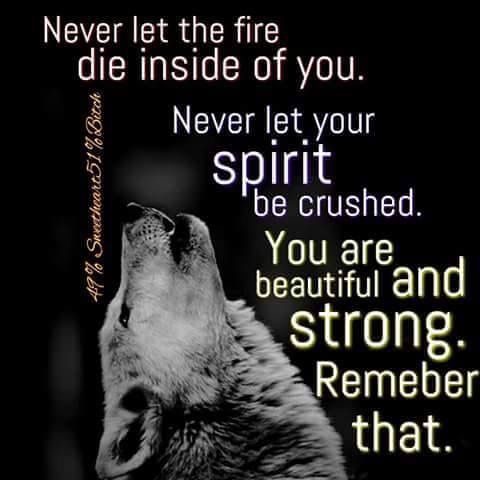 fresh-never-let-the-child-in-you-die-quotes-760-best-wolf-sayings-and-wolf-wisdom-en-wolves-quotes-never-let-the-child-in-you-die-quotes