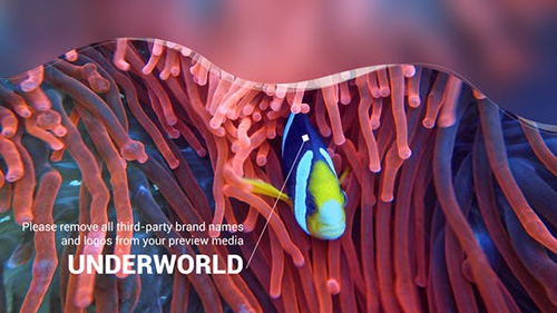 Scuba Diving Promotion Slideshow 25754741 - Project for After Effects (Videohive)