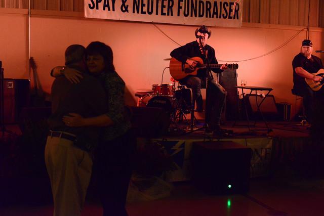 Spay-Neuter-3595.jpg